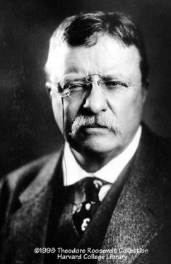 http://www.theodoreroosevelt.org/life/biopictures9.htm